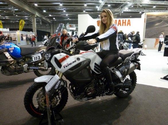 Yamaha Tenere Ohlins Shock YA 013